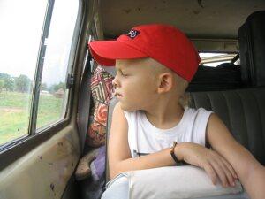 Gruss von der Rücksitzbank: Timon guckt rechts aus dem Fenster