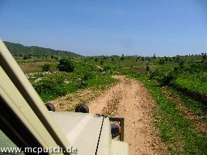 Der Weg nach Gamboura