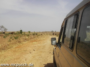 Blick am Fahrzeug längs: Staubiger Weg, wüstenähnliche Landschaft, in welcher einige Rinder nach Verwertbarem suchen.